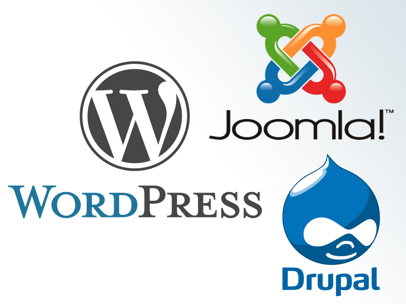 WordPress vs. Joomla vs. Drupal. Which CMS is Preferred Among Web Developers and Designers?