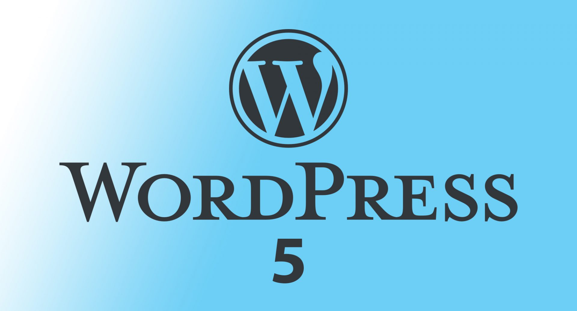 WordPress Launches 5.0: Discover The Changes Affecting Your Website